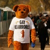 "A 'Gay Bearrorist."" Chip Somodevilla/Getty Images"