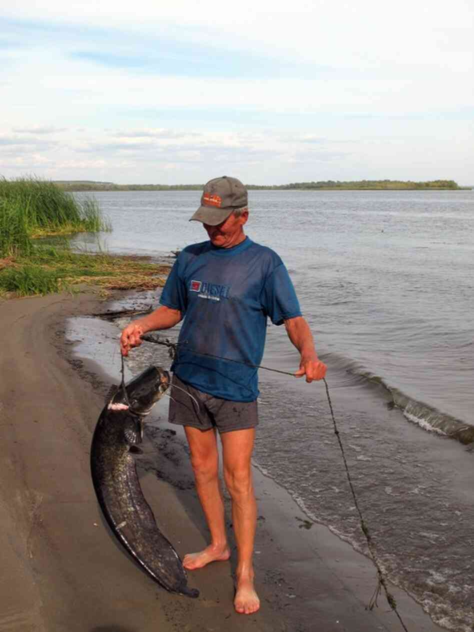 Anatolievich shows off a prize carp at his fishing camp in Usovka on the Volga.