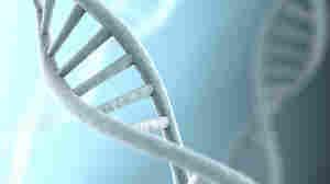 Feds' Gene Patent Rule Surprises Biotech
