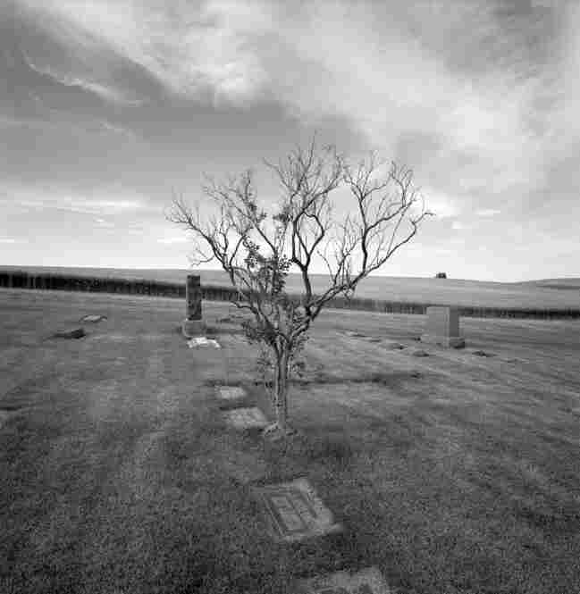 Untitled from the series Oaksdale, Washington, 1997