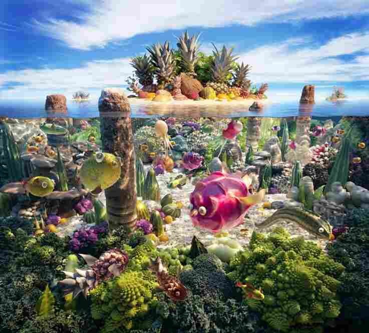 Coralscape: Sand: bulgur wheat, rice, couscous. Spiky rocks: durians. Fish: dragon fruit, prickly pears, kumquats, Chinese cucumber, etc.
