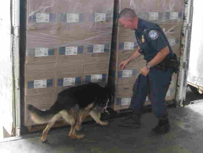 A federal agent and his canine