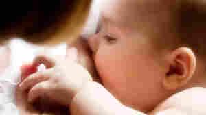 A nursing baby. iStockphoto.com