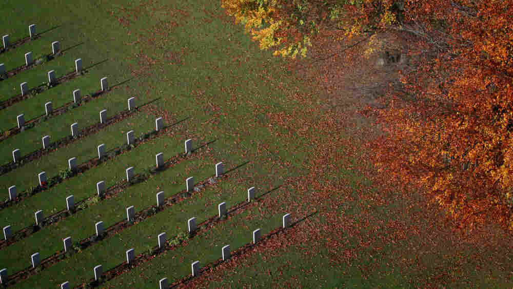 Autumn leaves gather in front of the graves of unknown soldiers.