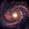 Supernova Shines Light On Black Hole Formation