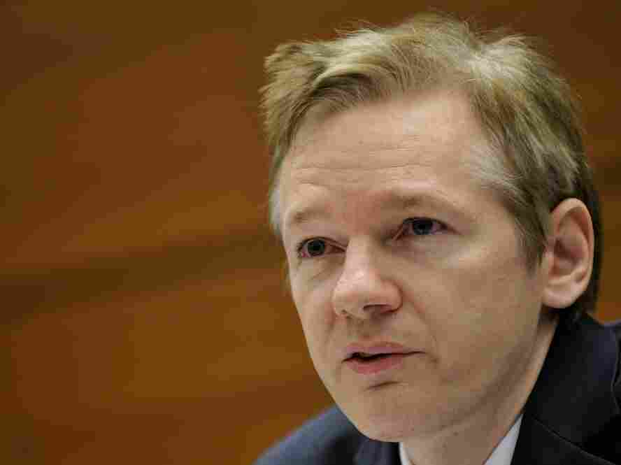 Wikileaks founder Julian Assange speaks during a NGO conference at the UN Office in Geneva on the si