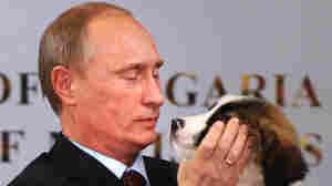 Name Putin's Puppy