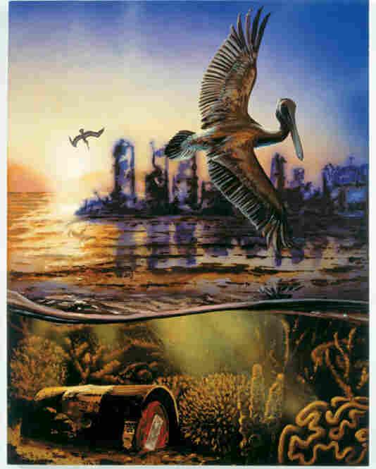 The Pelican, 2006