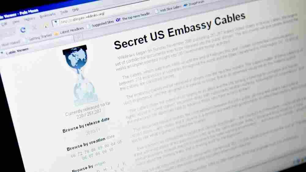 View of the WikiLeaks homepage taken on November 28, 2010.