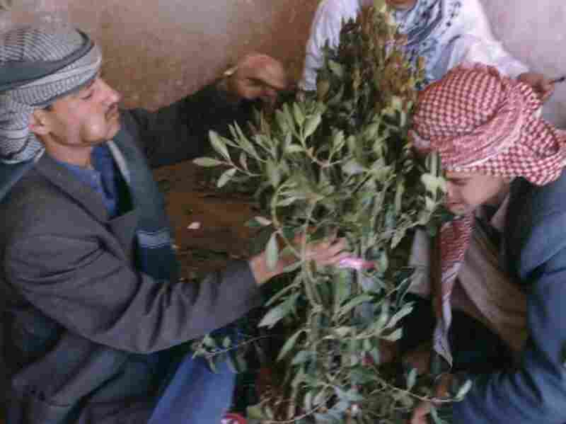 Two men buy khat, a stimulant popular in the Yemeni capital, San'a.