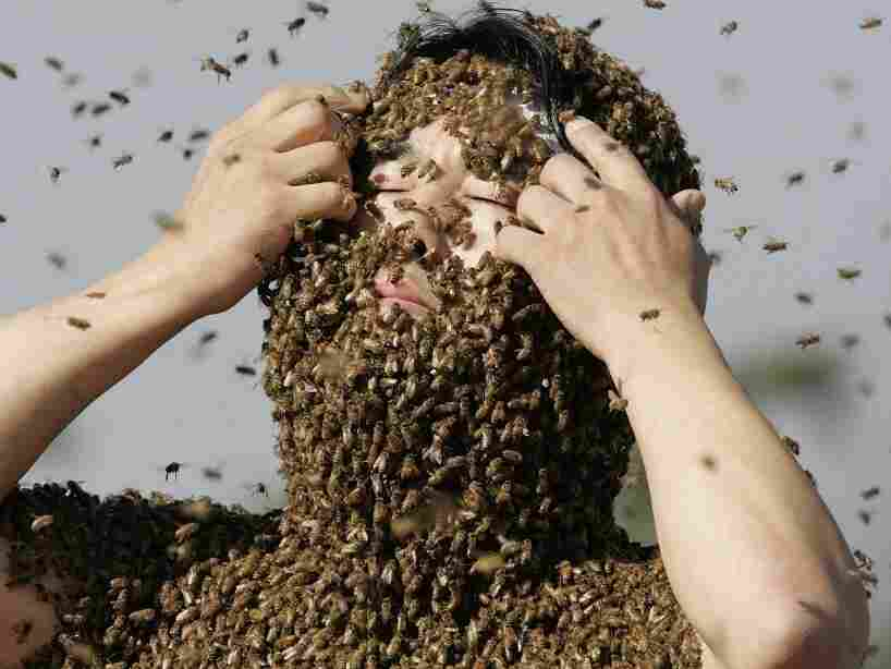 A man covered in bees.