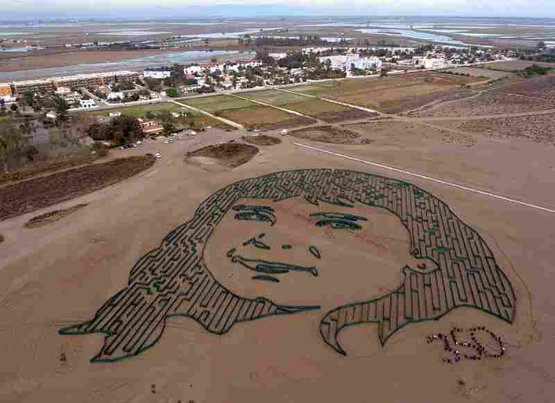 Citizens from the Delta del Ebro region joined renowned urban-artist Jorge Rodriguez-Gerada to form a giant representation of the face of a young girl who wishes to see the Delta survive the threat of climate change.