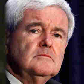 Former Speaker of the House Newt Gingrich.