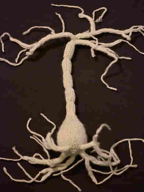 A hand knit neuron.