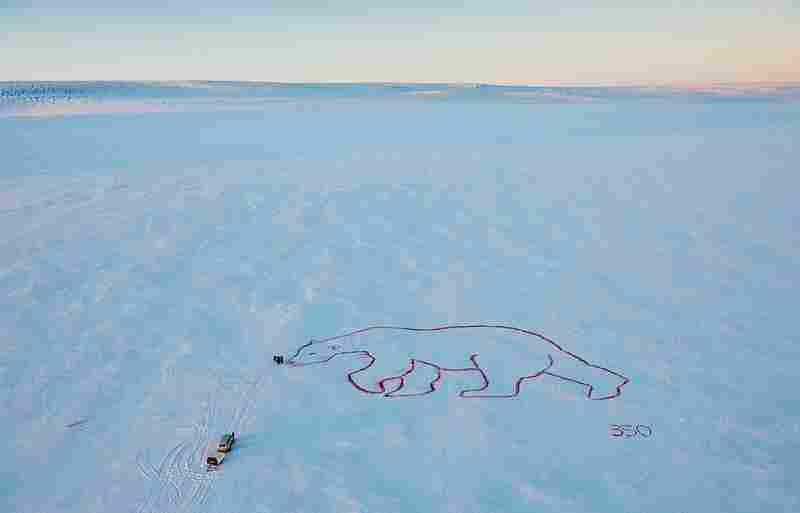 "Artist Bjargey XX created a ""Red Polar Bear"" with organic food dye on the Langjokull Glacier in Iceland."