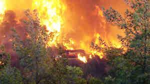 Dec. 2, 2010: A wildfire near Haifa, Israel, that killed at least 41 people.