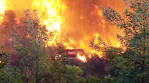 Dec. 2, 2010: A wildfire near Haifa, Israel, that killed at least 41 people.
