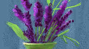 Purple flowers in a green-and-rose vase on a blue background