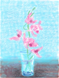 Pink flowers in a crystal jug on a blue background
