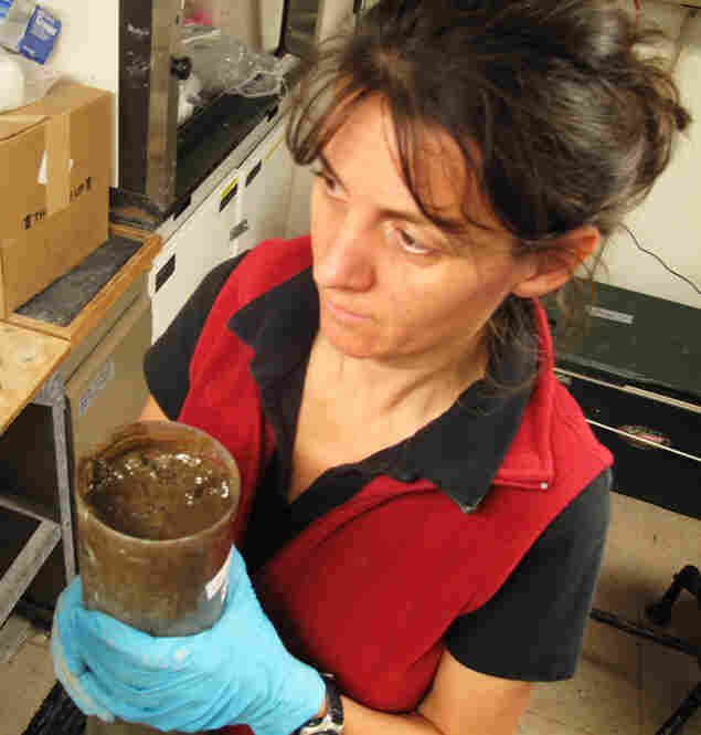 Verena Heuer, a researcher at the University of Bremen in Germany, holds a core sample that was collected about two miles from the Macondo well. A thick layer of brown coats the top of the usually gray mud.