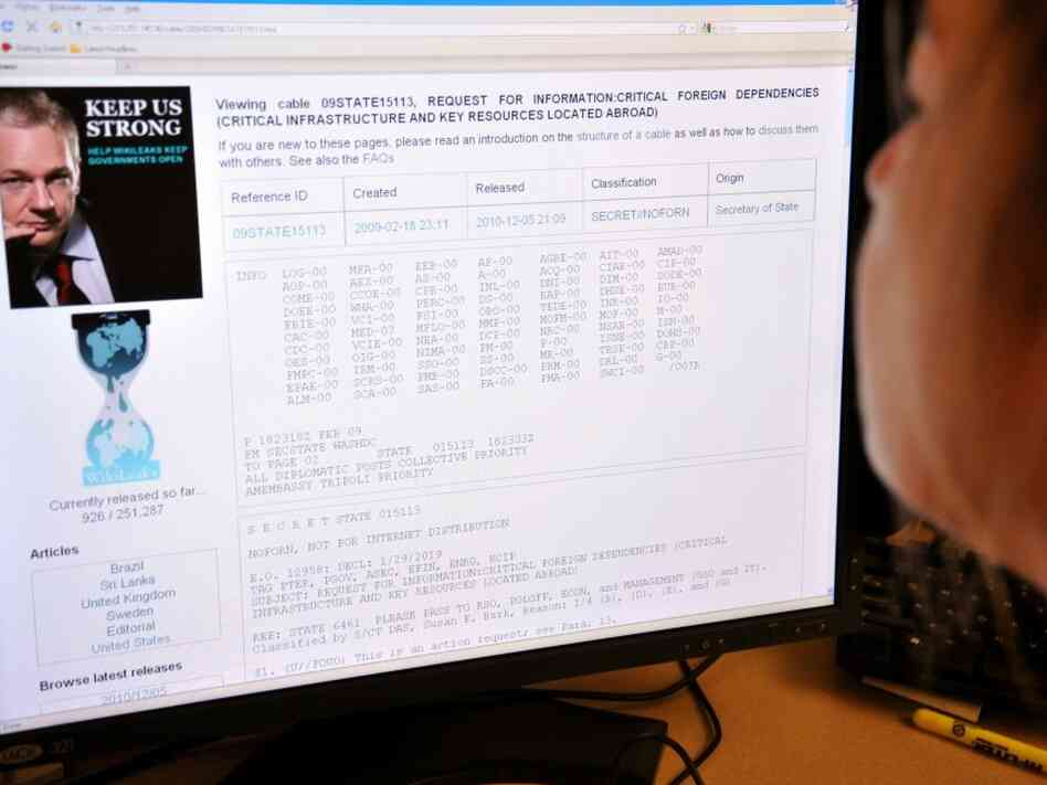 A woman reads a WikiLeaks page