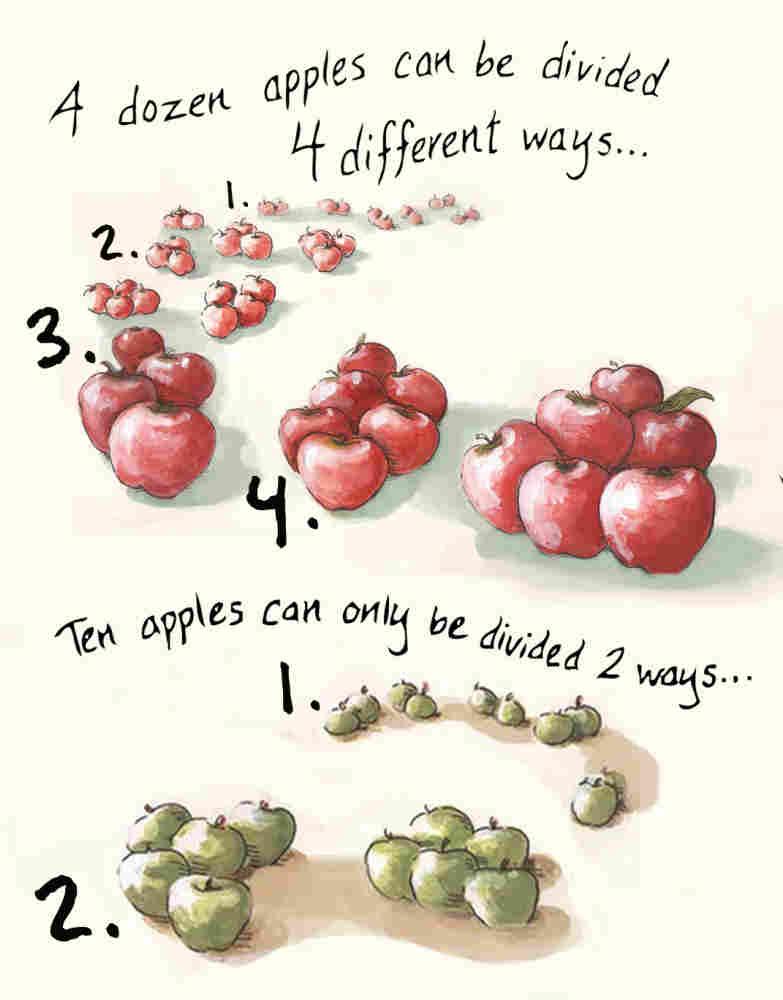 A dozen apples.