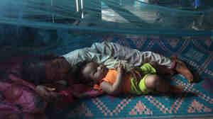 WHO Makes Progress Battling Drug Resistant Malaria In Cambodia