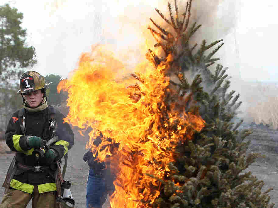 A fire department cadet monitors a Christmas tree on fire during a holiday safety demonstration.
