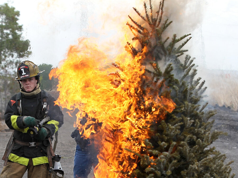 Oh Christmas Tree Stay Hydrated And Don't Catch Fire! Shots  - Christmas Trees On Fire