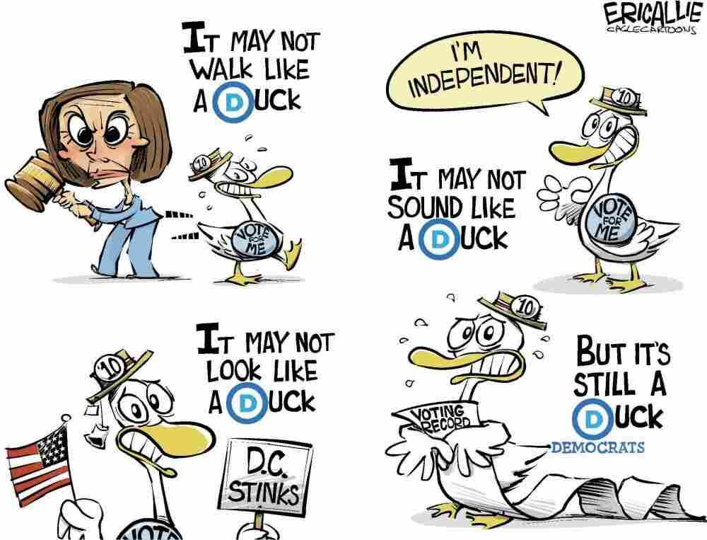 Democrats rebranding