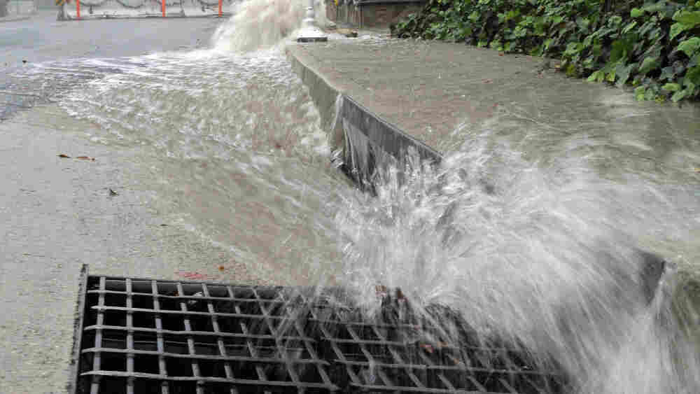 Rain water rushes into storm drains in La Canada Flintridge, below the site of the 2009 Station Fire. The area is endangered by flooding.