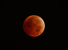 The reddish hue during the total eclipse.
