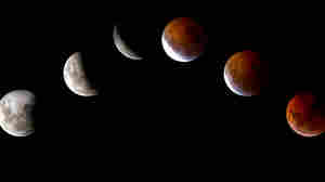 This combination of pictures shows the moon in various stages of a total lunar eclipse as seen from Mexico city on December 21, 2010.