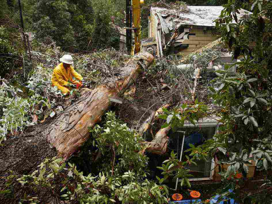 Los Angeles, Dec. 21: Cleaning up after a tree fell on a home.
