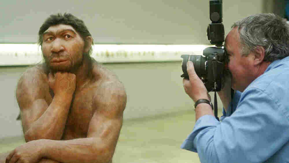 A Neanderthal sculptural model being photographed.