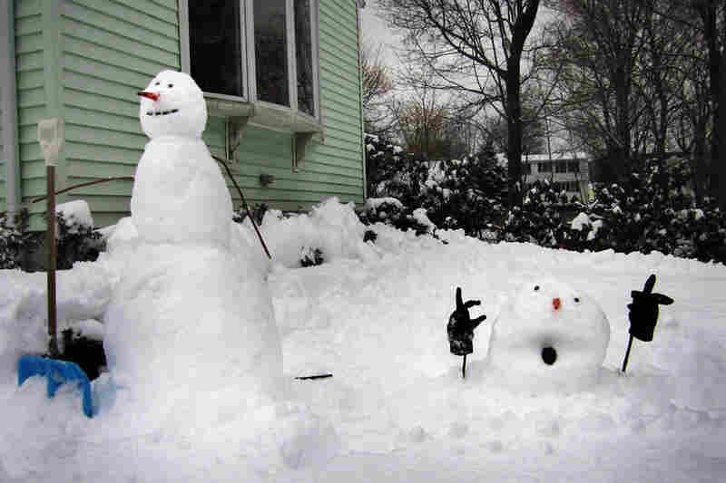 Another Calvin and Hobbes scene brought to life.