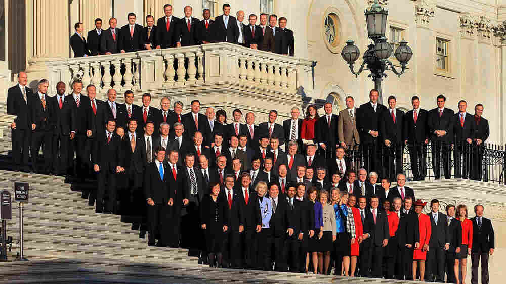The freshmen members of the upcoming 112th Congress pose for a class photo on the steps of the U.S. Capitol. The group includes a dentist, a nurse and a pizzeria owner, among other professions.