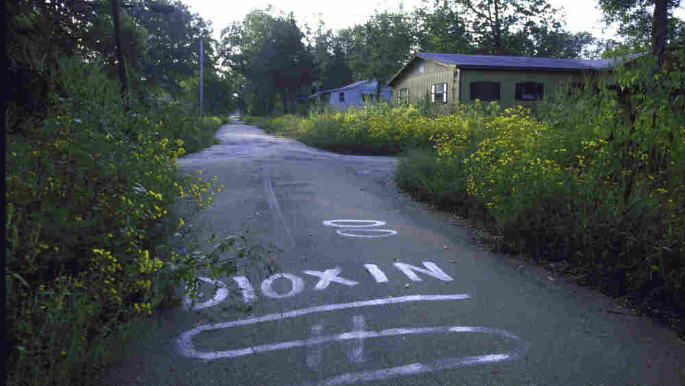 Residents of Times Beach, Mo., were forced to leave their town in December, 1982 because the chemical dioxin was found in the soil. Thirty years later, the Environmental Protection Agency can't decide how dangerous the chemical is.