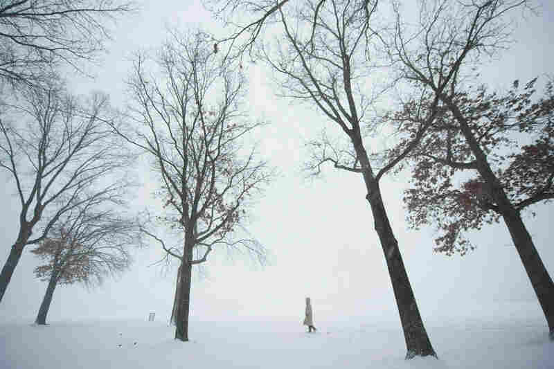 A woman walks trough the trees during heavy snow in the Bronx borough of New York.