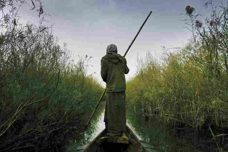 An Iraqi on his canoe in the Kurmashia marsh in southern Iraq, 2004