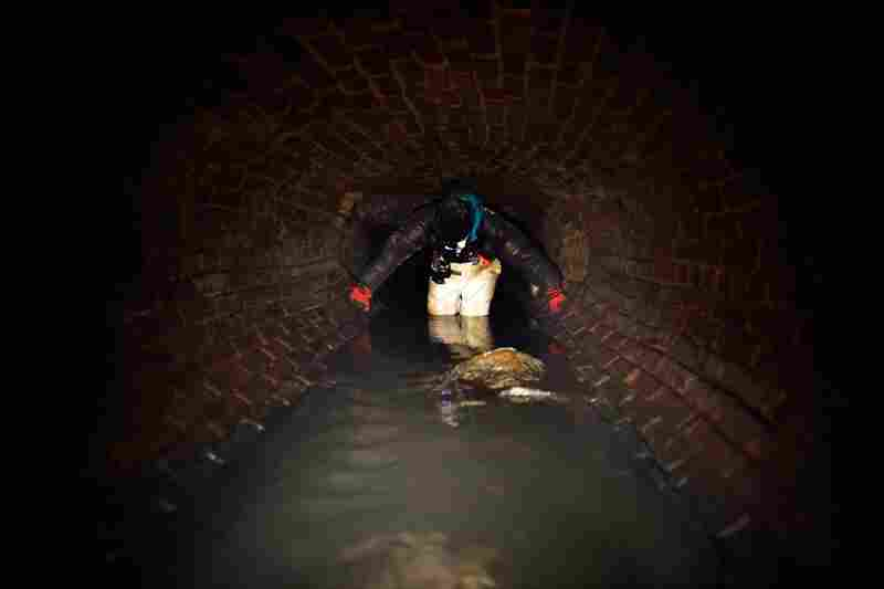 Kagge wades through a side street sewer leading to the Canal St sewer. The explorers trudge through raw sewage, and crawl through tiny spaces full of rats and cockroaches. To them, it's all part of the adventure.