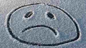 Winter weather often affects people's moods. Researchers now say most people fall into one of four categories.