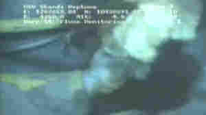 This image, captured from a video feed from a remote submarine shows BP's Macondo well leaking natural gas on May 12, 2010. A new study concludes that the vast quantity of methane gas that spewed from the well in the Gulf of Mexico was rapidly eaten by bacteria.