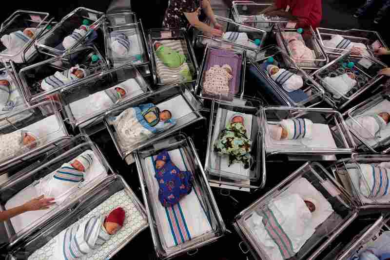 Bundled newborns on Sept. 1, 2010, are arranged for a portrait at Orlando's Winnie Palmer Hospital, the second busiest birth facility in the U.S. By 2050 America's population is expected to top 400 million.