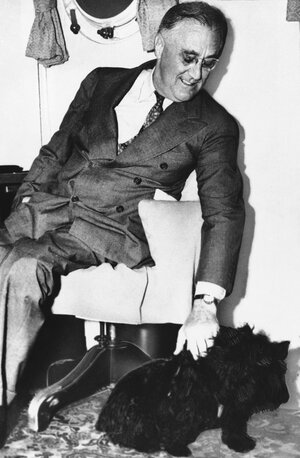 Shown in an undated photo of United States President Franklin D. Roosevelt with his pet dog Fala.