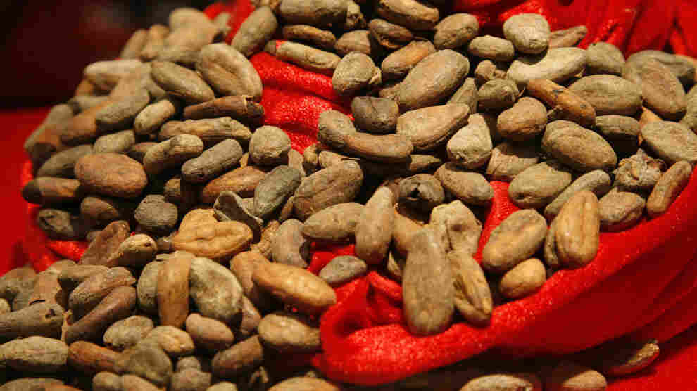 Cocoa beans like these can be sprayed with pesticides like sulfuryl fluoride.