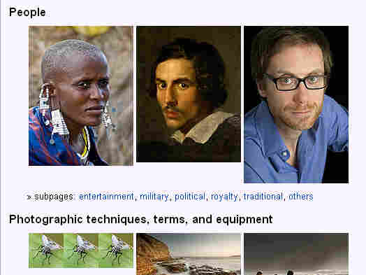 Wikipedia now contains more than 3.5 million entries in its English-language site. Above, a screengrab from Wikipedia's photography section.