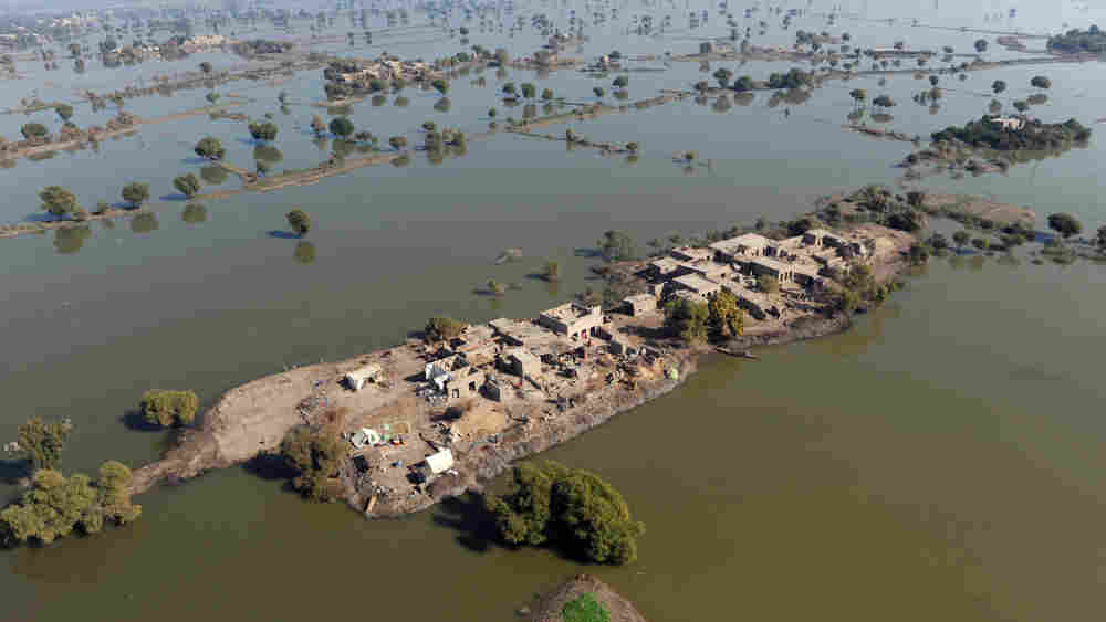 Though precipitation levels do vary region to region, when looked at globally, 2010 was also the wettest year on record. In Pakistan, makeshift camps popped up in areas ravaged by catastrophic flooding.