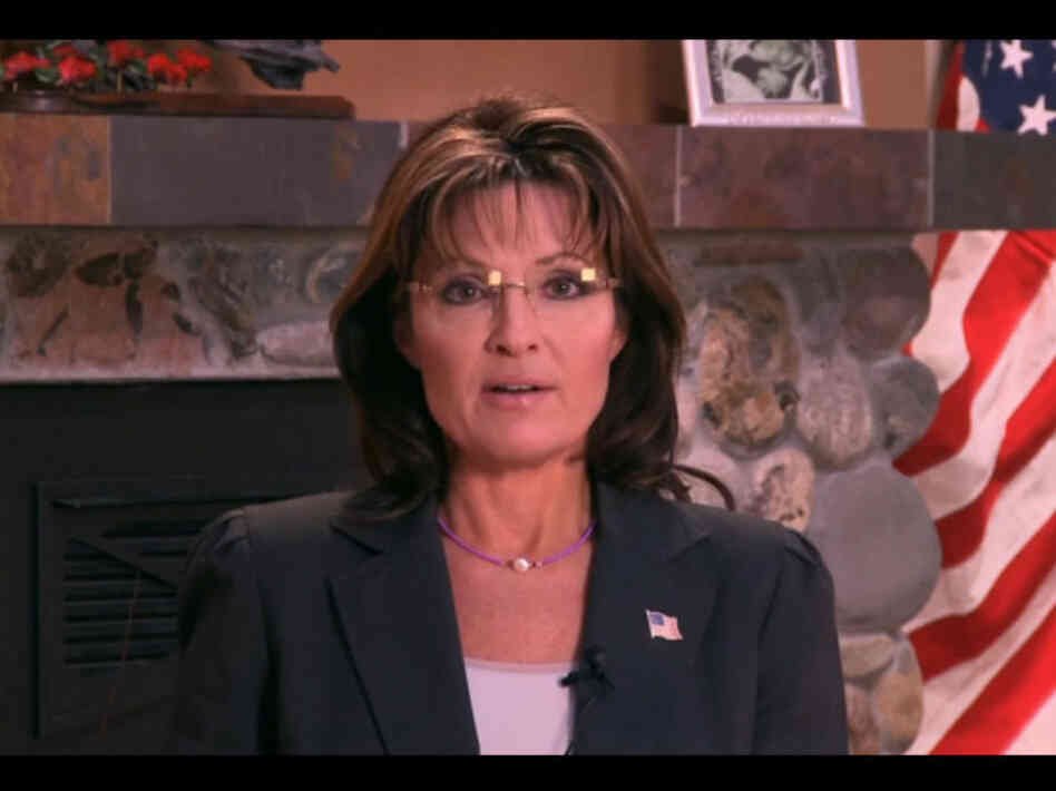 "Screenshot of Sarah Palin's ""blood libel"" video."