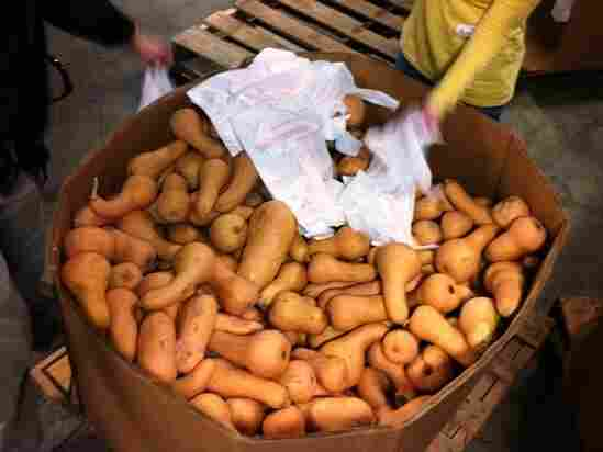 Volunteers at Second Harvest Food Bank of Middle Tennessee sort 50 pallets of butternut squash. Bringing in more produce is one way food banks plan to meet new nutrition goals.